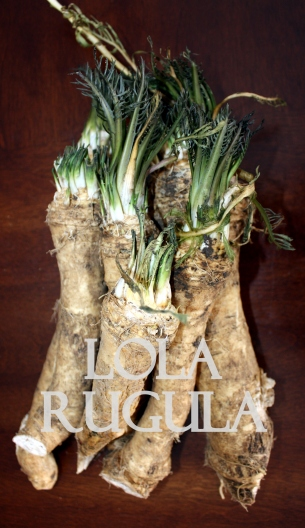 lola rugula how to make homemade horseradish1