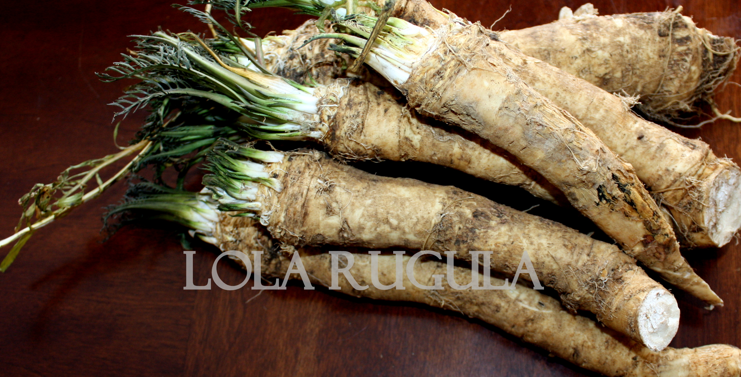 how to make homemade horseradish | lola rugula